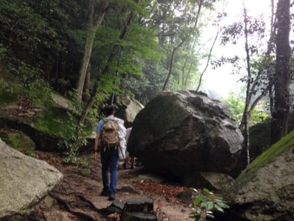 裏登山道を登ることになりました。