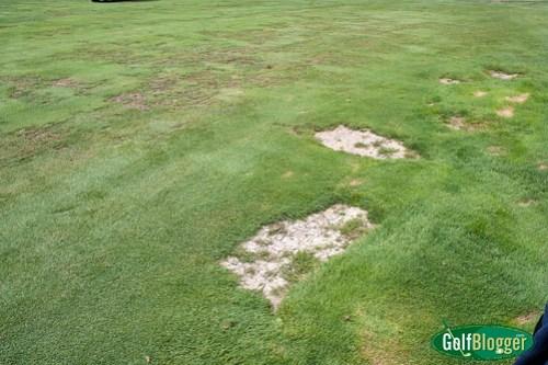 Stony Creek Metropark Golf Course-2181