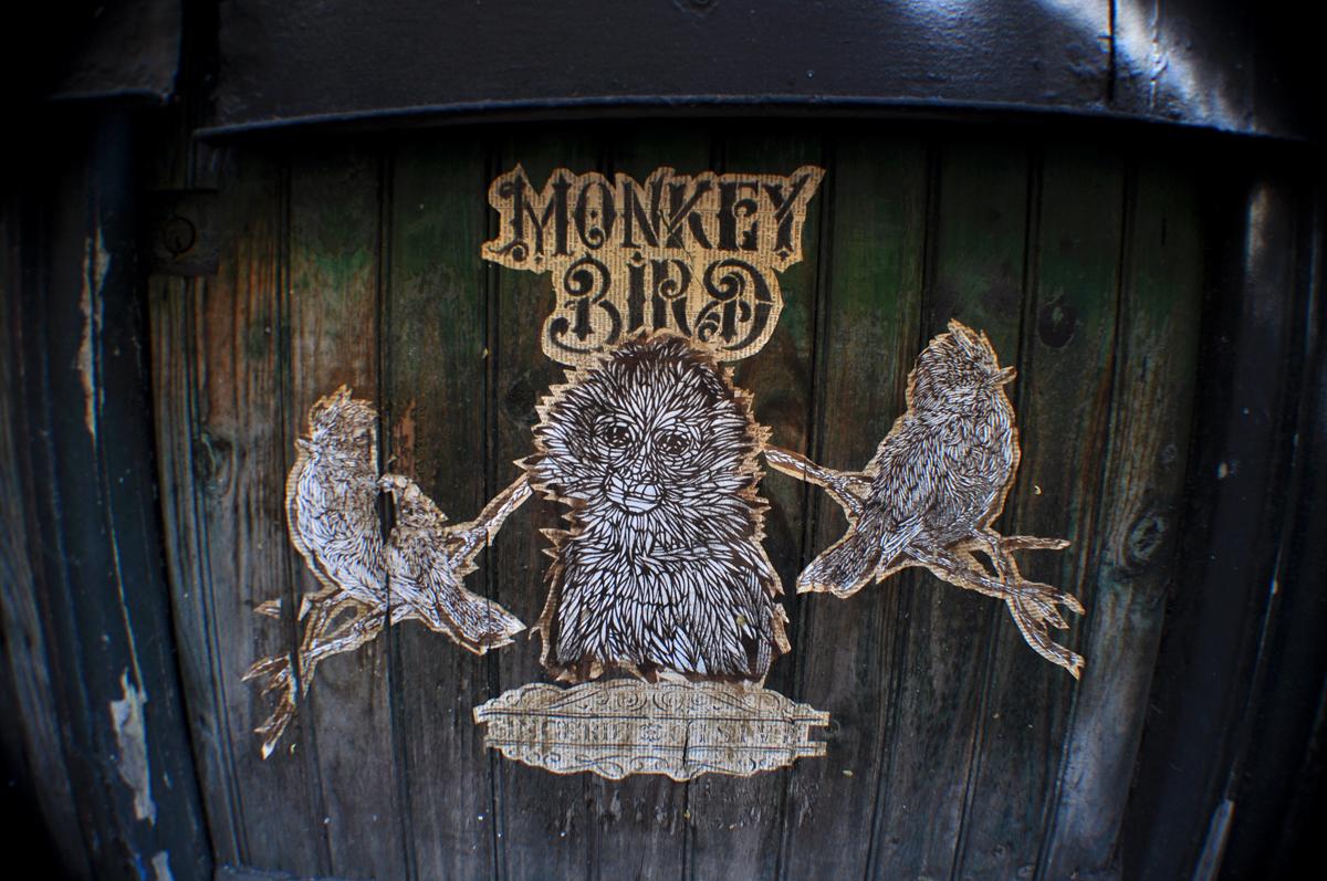 Monkey Bird 1