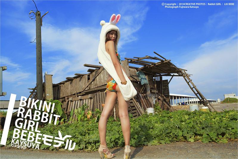 RABBIT|北北 by 藤原克也 - DCFever.com