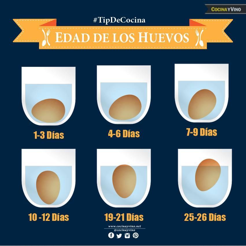 La edad de los huevos