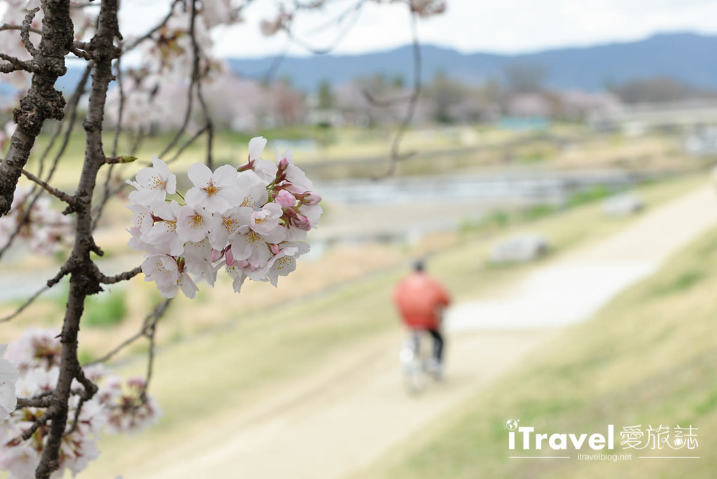 京都脚踏车出租 Rent a cycle EMUSICA (24)