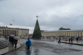 Samen gingen we o.a. de kerstboom voor het parlement bekijken.