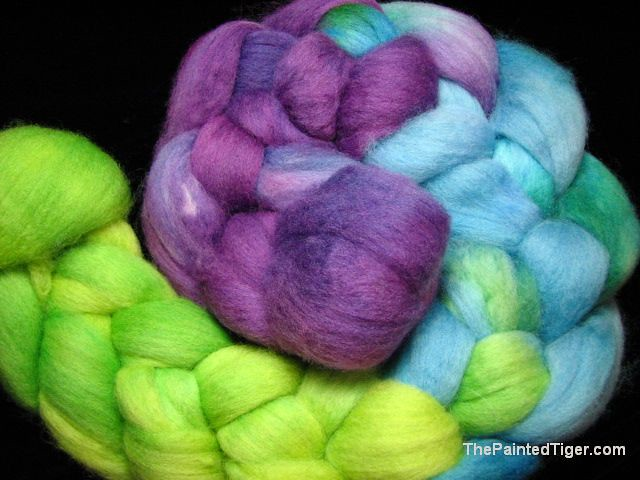 Darner Dragonfly Polwarth