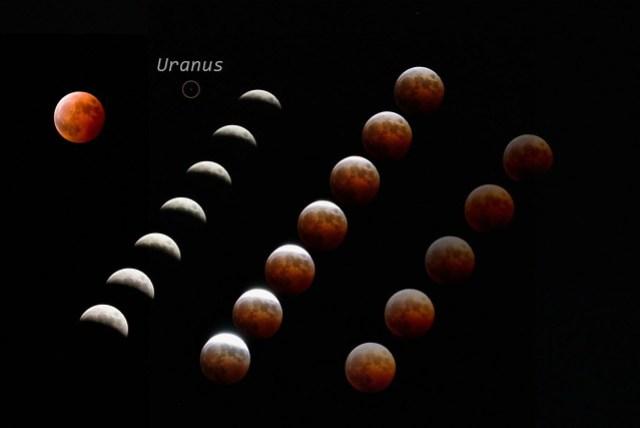 total lunar eclipse 2014