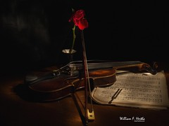 Light Painting #10: Violin
