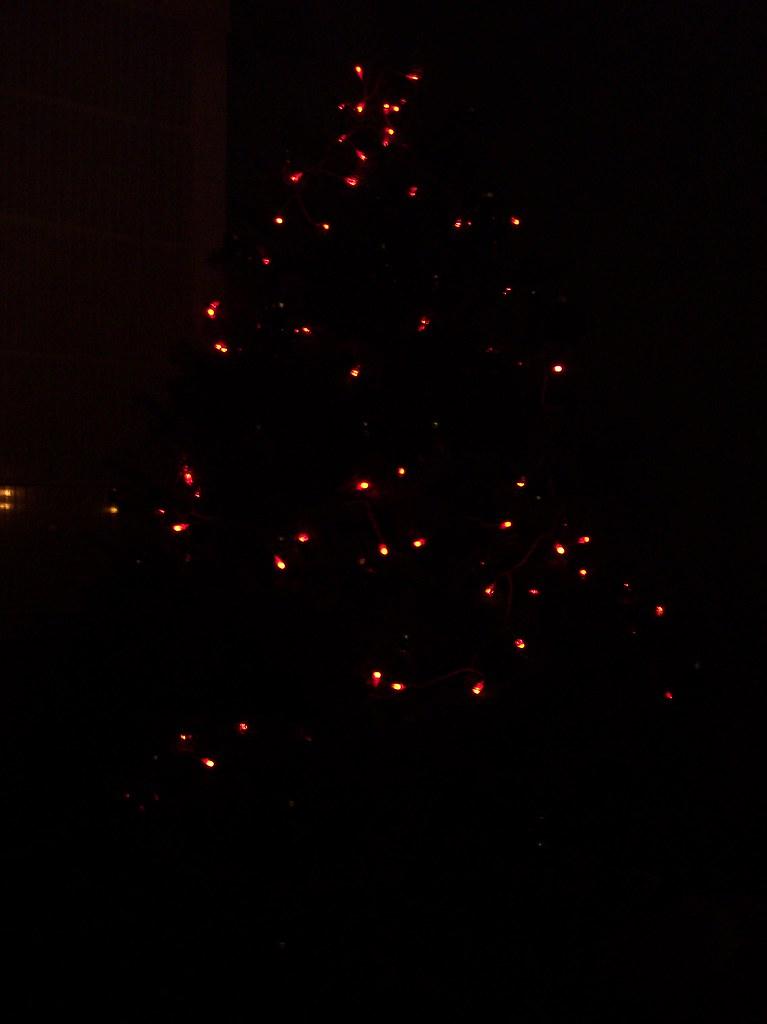 Weihnachtsbaum / christmas tree 2008