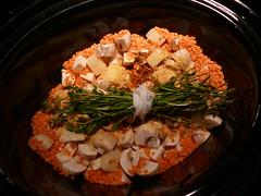 Slow cooker lentil wild rice stew