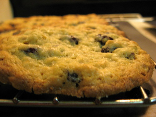 Oatmeal Raisin Cookie - Close Up