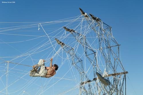 tangled climber