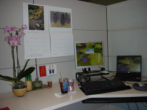 Desk Meme