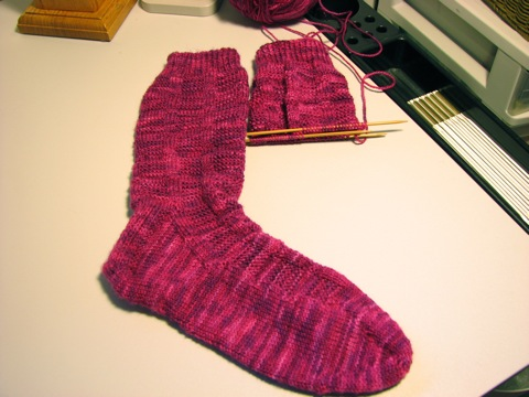 1st Stanfield 27 Sock