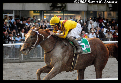 Curlin is the $10 Million Man