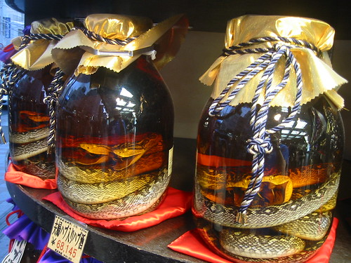 Snakes in a Jar, Okinawa