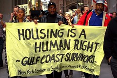 Gulf Coast SURVIVORS.