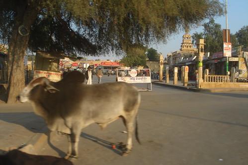 前往Jaisalmer路上1-121