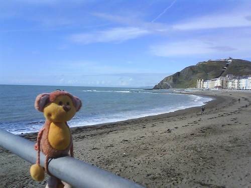 Posing by the seaside