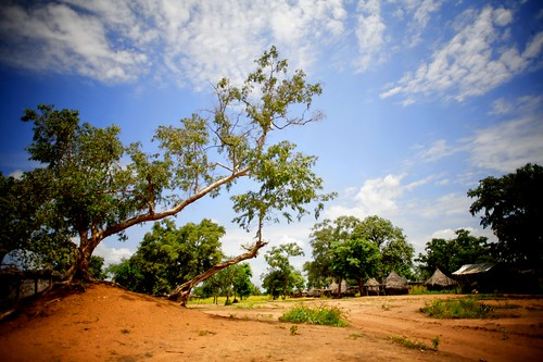 _MG_4451 | Kurmuk BlueNile Sudan