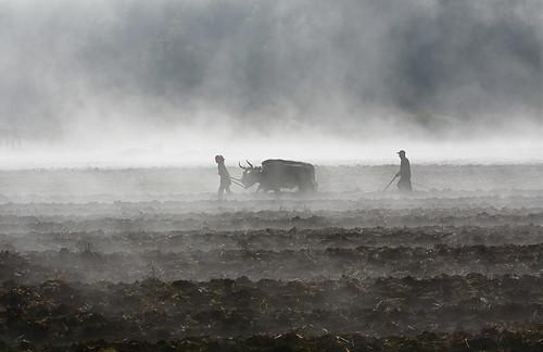 shangri-la 香格里拉 – photo : Jake Ji