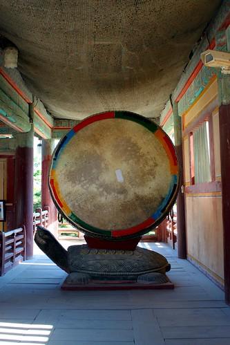 The tortoise drum