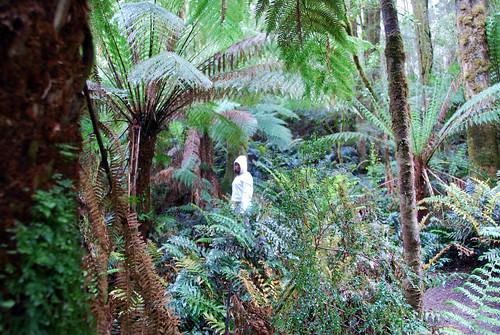 Andrea en la selva