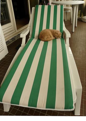 C'est MA chaise-longue