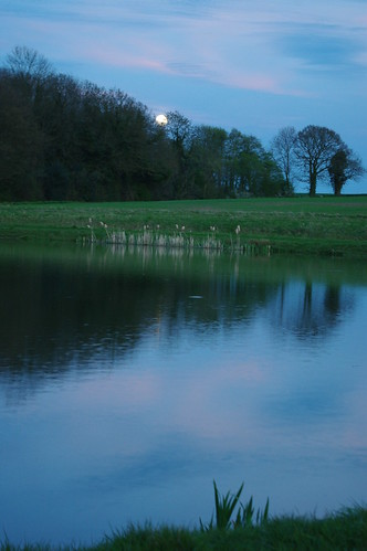 20100427-14_Moon-rise_Potford's Dam Pool + Cawston Woods by gary.hadden