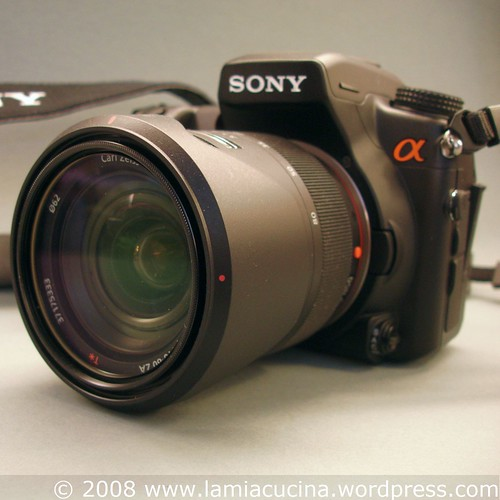 Sony A-700 mit Vario-Sonar DT 16-80mm
