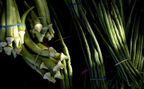 Okra (ladyfingers) and greenbeans, Kauai