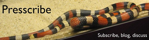 Snakes in a Blog Header