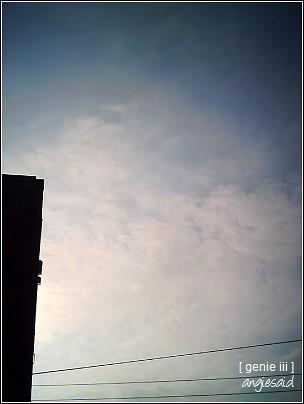 20080320_050.jpg