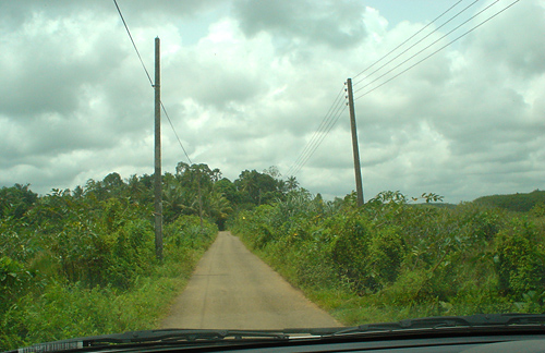 One lane road over marsh on route to Bevis Bawa's Brief garden - Sri Lanka