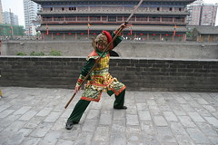 Tang Dynasty Warrior