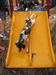 Hildy bustin loose on the slide