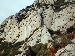 Las paredes de Le Catalan