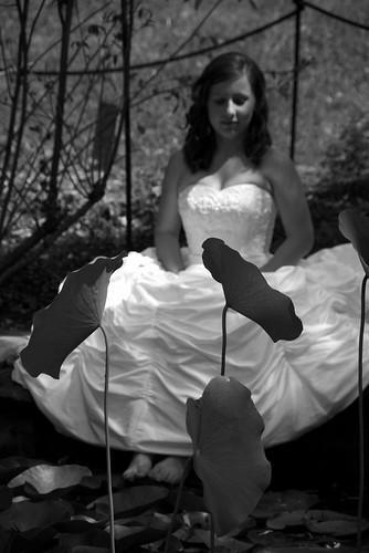 The Pixie Bride