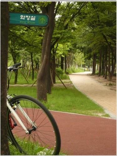 축구장 뒷편 조깅 겸 자전거 도로 #6