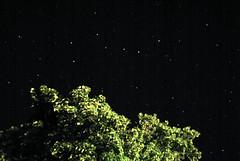 Stars in the dales 1
