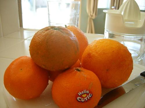 Blood Oranges & Mandarin Oranges