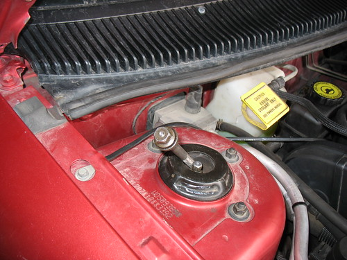 pictures of engine compartment grounds - neonsorg
