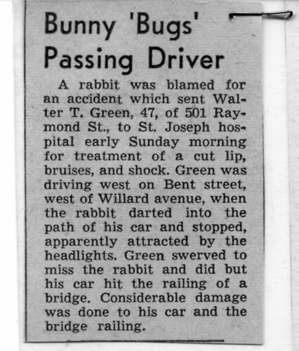 Bunny Bugs Passing Driver