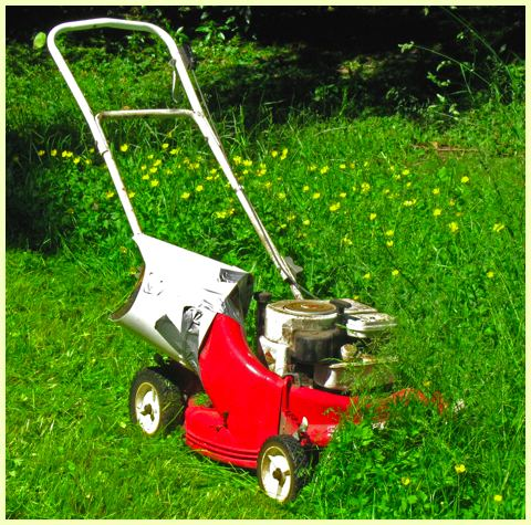Snapper lawnmower in tall grass