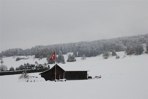 Der erste Schnee 2008-002