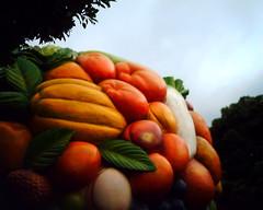 Fruit tree (VQ1005)