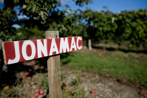 Jonamac!