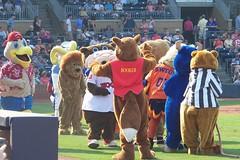 Durham Bulls - Mascots convene to observe Wool E. Bull's Birthday