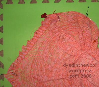 anniversary shawl 17-10-08 2