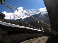 Annapurnas y Manis... otro gran clásico
