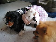 Charlie, Mumoo & Lil' Bear