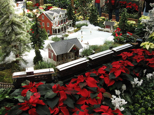 Train & poinsettias